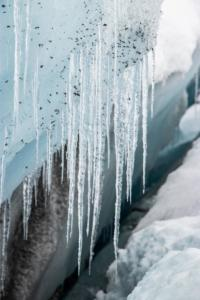 Icicles from glacier melt